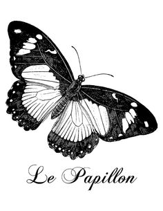 Nightbird Graphics: Le Papillon French Vintage Butterfly Printable...