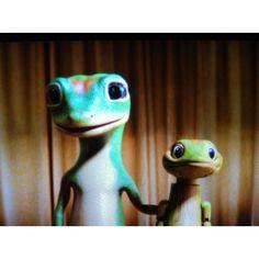 Geico friends:) Geico Lizard, Flying Pig, Pigs, Daddy, Creatures, Lol, Friends, Funny, Cute