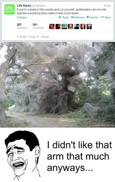 If you are in the woods…