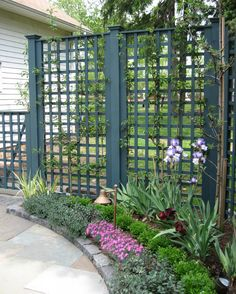 Small trellis wall near property line on side yard near front porch for privacy.