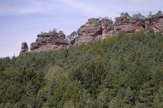 pfaelzerwald | Biosphärenreservat Pfälzerwald-Nordvogesen