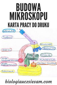School Notes, Montessori, Anatomy, Homeschool, Medical, Study, Science, Writing, Education