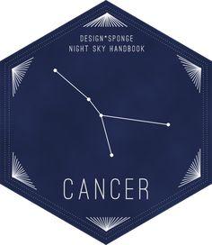 constellation * cancer
