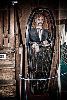 Dutch Door Coffin