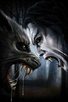 Werewolf against vampire