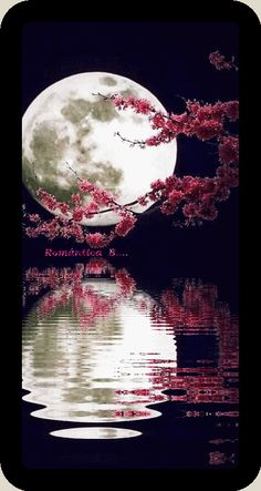 Best collection of most beautiful Moon pictures amazing photographs. These stunning moon photos are best to use as wallpapers or your cover photos. Moon Pictures, Nature Pictures, Pretty Pictures, Beautiful Moon, Beautiful World, Beautiful Images, Gorgeous Gorgeous, Beautiful People, Ciel Nocturne