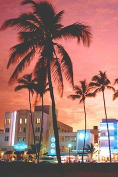 If I would ever get a chance of visiting 10 best places of the world, Miami will surely be the one among them. Though destinations often are said to offer something for everyone, the Miami offers m… South Beach Miami, Miami Florida, South Florida, Palm Trees Tumblr, Beach Please, Miami Vice, Santa Monica, Summer Vibes, Summer Nights