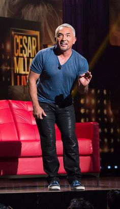 Dog Expert Cesar Millan performs Live at The Pearl at Palms Casino Resort in Las Vegas on Aug 15, 2014 (Photo credit: Nat Geo WILD).