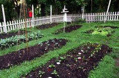 A Guide To Creating a No-Till Garden - lasagna gardening Raised Vegetable Gardens, Vegetable Garden Planning, Vegetable Garden Design, No Till Garden, Starter Garden, Dig Gardens, Garden Labels, Garden Trellis, Organic Vegetables