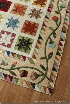 Beautiful, wonderful stars and gorgeous appliqued and pieced borders....  I just adore this quilt.        adele5