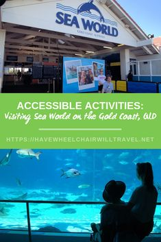 We are a family sharing our travels, tips and experiences here at Have Wheelchair Will Travel. While we have a focus on travel we know that travel is a 'sometimes' activity for most of us, so we share our day-to-day tips and other fun in between. Gold Coast Queensland, Gold Coast Australia, Queensland Australia, Travel With Kids, Family Travel, Travel And Leisure, Travel Tips, Travel Reviews, Polar Bears