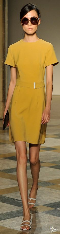 Spring 2015 Ready-to-Wear Chicca Lualdi BeeQueen