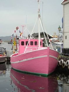 My kind of boat =Pink fishing boat - Bergen, Norway ! Pink Lady, Color Rosa, Pink Color, Pink And Green, Pink Purple, Hot Pink, Tout Rose, I Believe In Pink, Everything Pink