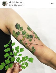 @rit.kit.tattoo beautiful tattoo, totaly nature inspired, by Ukrainian artist Rita #liveleaftattoo