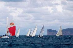 sailing in sardinia, sailing in alghero combined with Italian