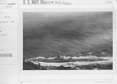 USS Sea Cat (SS 399)