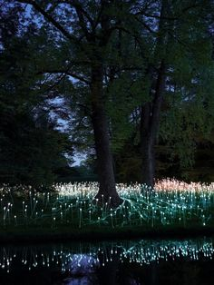British light artist Bruce Munro