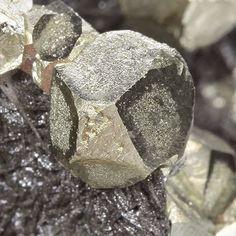 Pyrite (interesting habit) - Canutillos Mine, (Colavi District), Cornelio Saavedra Province, Potosí Department, Bolivia