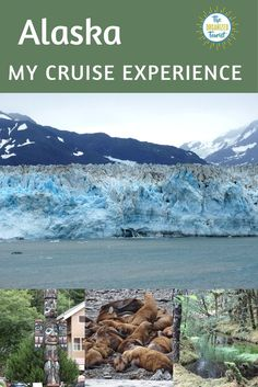 Two years ago I finally made it to Alaska, taking a Princess cruise from Whittier to Vancouver. Alaska had been on my bucket list Cruise Tips, Cruise Travel, Cruise Vacation, Solo Travel, Travel Usa, Travel Tips, Travel Ideas, Canada Travel, Vacation Ideas