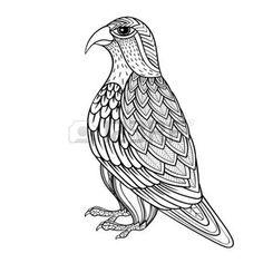 zentangle: Falcon zentangle vector, halcón ave de presa y depredador de páginas para adultos anti estrés colorear. Ornamental ilustración patrón tribal de tatuaje, cartel o impresión. Dibujado a mano dibujo blanco y negro. colección de aves.