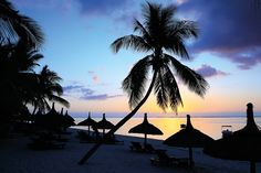 Royal Palm Mauritius - an oasis of luxury. Sip cocktails at sunset and drink in the view