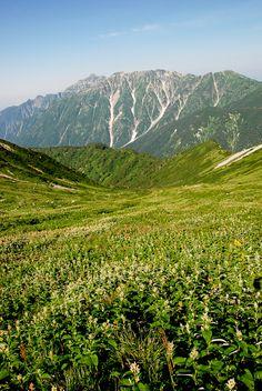 飛騨沢は天国のような世界だ。日本ではないみたい。