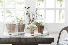 Riverdale landelijk naturel wit beige grijs hout beach Scandinavisch lente/zomer interieur woonkamer decoratie woonaccessoires