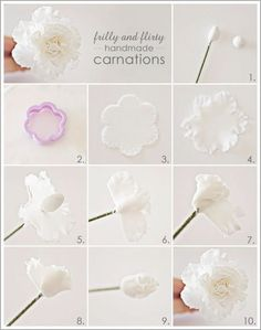 Peony in polymerclay or cold porcelaine