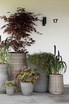 Se Nordiq's store udvalg af outdoor krukker og figurer til sæsonen 2020.  Forhandles gennem dit lokale havecenter eller blomsterbutik. Plants, Outdoor, Patio, Outdoors, Plant, Outdoor Games, The Great Outdoors, Planets