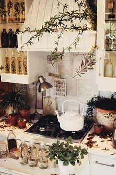 Fresh and earthy. Something magical about this otherwise Martha Stewart kitchen.... bohemian which I love !