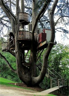 The world's 15 most Stunning Tree Houses. | (10 Beautiful Photos)