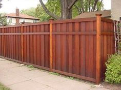Outdoor: Privacy Fence Designs Using Wood Gate With Cedar Fence Design And Cedar Fence Gate Design, wooden fence designs, cedar privacy fence designs Cedar Wood Fence, Wood Privacy Fence, Privacy Fence Designs, Fence Stain, Fence Gate, Fence Panels, Wooden Fences, Cedar Gate, Outdoor Privacy
