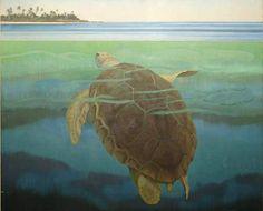 Marine Turtle' By Audrey Weber, 1955
