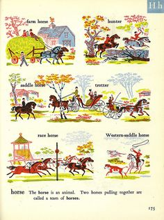 The Rainbow Dictionary - horse | Flickr - Photo Sharing!