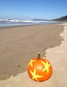 Beach Pumpkin with Star Fish Carving