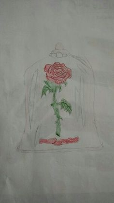 The rose from Beauty and the Beast, credit to @firefly0jg