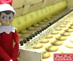 """""""Buddy, we're missing a few cookies in the last box. Do you know what happened to them?"""" Buddy couldn't resist these lemon goodies! Too bad he thinks he got away with it. #ElfOnTheShelf Find our cookies at: http://shop.budsbestcookies.com/collections/bud-s-best-cookies/6-Oz-Bag"""