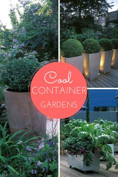 Garden Containers and Pots to Inspire --> http://www.hgtvgardens.com/photos/gardens-photos/contain-yourself-gardening-in-containers-and-pots?soc=pinterest