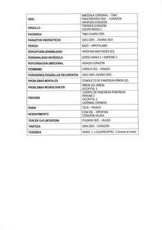AMIGDALA CEREBRAL — TIMO PARATIROIDES DER.  — CORAZÓN HIPOFISIS-CORAZÓN         ORGULLO  T| RO| DES-CORAZÓN CISURA MEDIA 2...