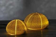 Martina Sigmund-Servetti | Porcelain Gallery Glowing urchins