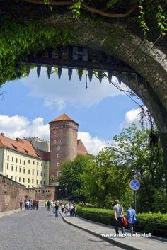 Senator's Tower on the Wawel Hill