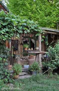 This is a scene from Jill Redwood's off-grid life. Jill built her house in East Gippsland, Australia where she has lived alone for over 30 years entirely off-grid with no mains power, water, mobile reception or television. More pictures and an inspiring video at www.naturalhomes.org/permahome/offgrid-jill-redwood.htm / The Green Life <3