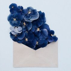 Delicate Arrangements of Vibrant Flowers Complement Naturally-Toned Vintage Paper Envelopes Ravenclaw, All The Bright Places, Everything Is Blue, Bloom, Deco Floral, No Rain, Blue Aesthetic, Pansies, Shades Of Blue
