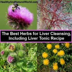 Liver Cleansing Tonic: 2 parts dandelion root  1 part wild yam root  1 part yellow dock root  1 part burdock root  1 part milk thistle