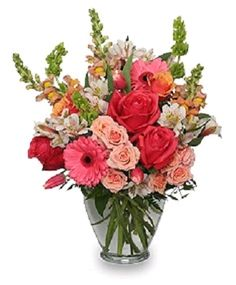 We have the perfect flowers to say just what you want to express. Whether it's a dozen long stem red roses, celebrating an anniversary, a beautiful bright garden assortment for a birthday, seasonal flowers, a touching sympathy funeral flower arrangement or blooming plants, Texas Blooms and Gifts can help you make a lasting impression. #texasblooms #florist #flowers #gifts