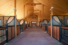 Airy Stalls  The open-type stall dividers and stall fronts in this barn, as well as the lower front grids, allow horses to see and interact with each other. This configuration also aids in air circulation.