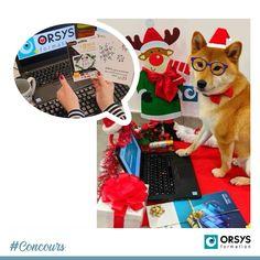 Nous poursuivons le classement de notre concours photos de Noël 🎄🎅 C'est Ophélie du centre d'Orléans qui obtient la 2ème place avec le beau Neïko ! Bravo à Ophélie ainsi qu'à son chien qui s'était mis sur son 31 pour les fêtes 🐶 Elle remporte une carte cadeau de 150€ 👏 Décidément, les chiens ont eu beaucoup de succès dans ce concours 🐾 #ORSYS #concours #concoursdeNoël #PèreNoël #chien #dog #formation #formationprofessionnelle #formpro