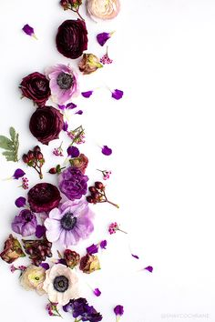 Endless gorgeous Pantone Ultra Violet styled stock images for your social media feeds. Shay Cochrane for Social Squares. Flower Background Wallpaper, Flower Phone Wallpaper, Flower Backgrounds, Nature Wallpaper, Wallpaper Backgrounds, Iphone Wallpaper, Flower Frame, Flower Art, Flower Ideas