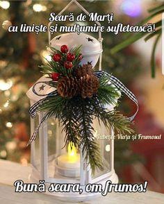 Magical Christmas, Noel Christmas, Outdoor Christmas, Rustic Christmas, Christmas Wreaths, Beautiful Christmas, Christmas Lanterns Diy, Homemade Christmas, Simple Christmas