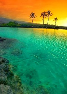 Amazing Hawaii - it was great living here for 3 yrs. Layed back, low key and relaxing.